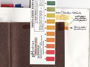 Traveler Notebook Acidity Test