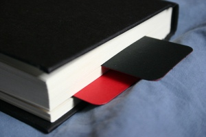 Bookmark from Leather Moleskine Limited Edition