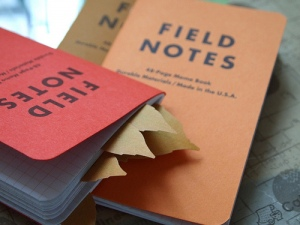 Leaf-it with Mackinaw Autumn Field Notes