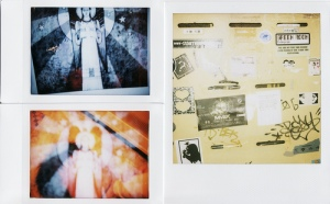 DianaFuji vs Polaroid