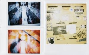 DianaFuji vs Polaroid