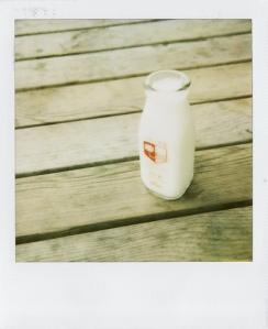 Last Polaroids_0046