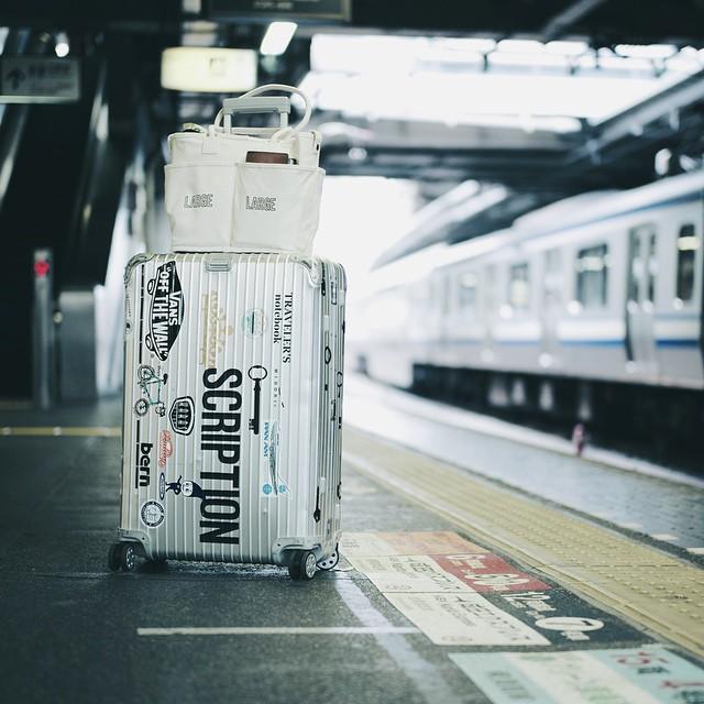 5 vegie bag